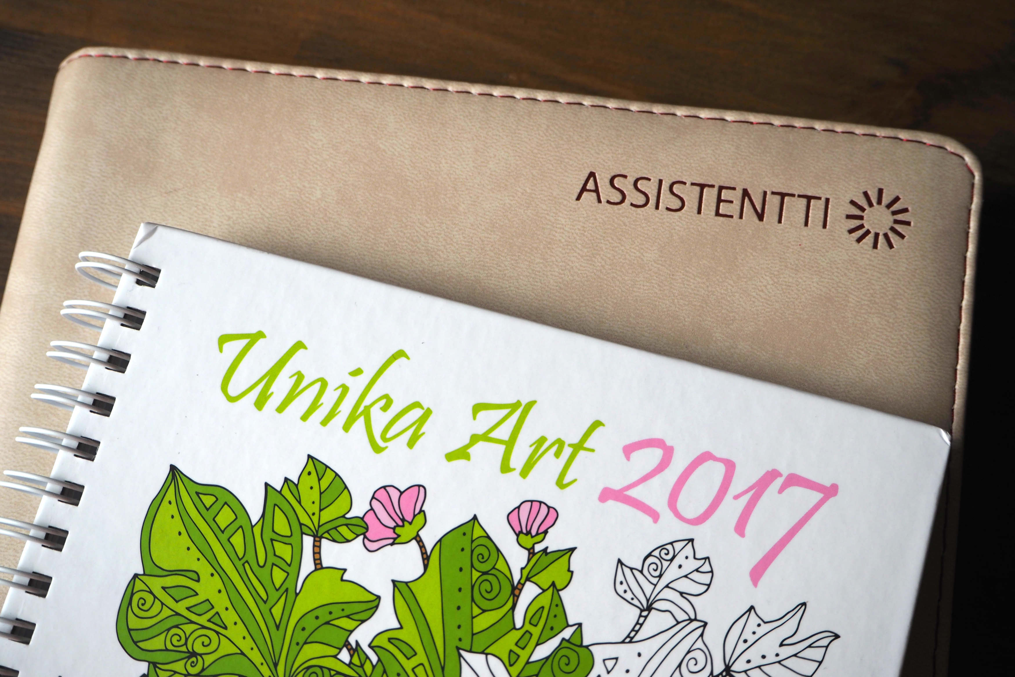 assistentti-unika-art